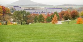Image of trees and stadium. Photo credit TAD and Danielle Strickler.