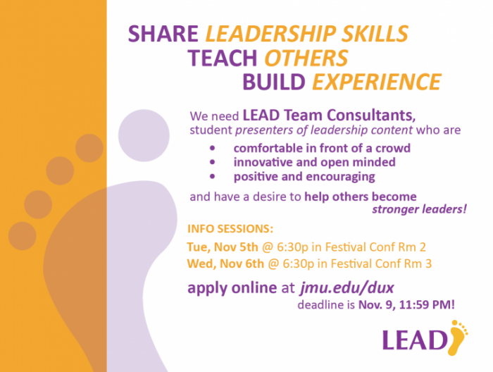 LEAD Team Consultant Ad