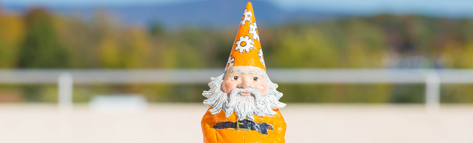 TAD Gnome with scenic overlook background.