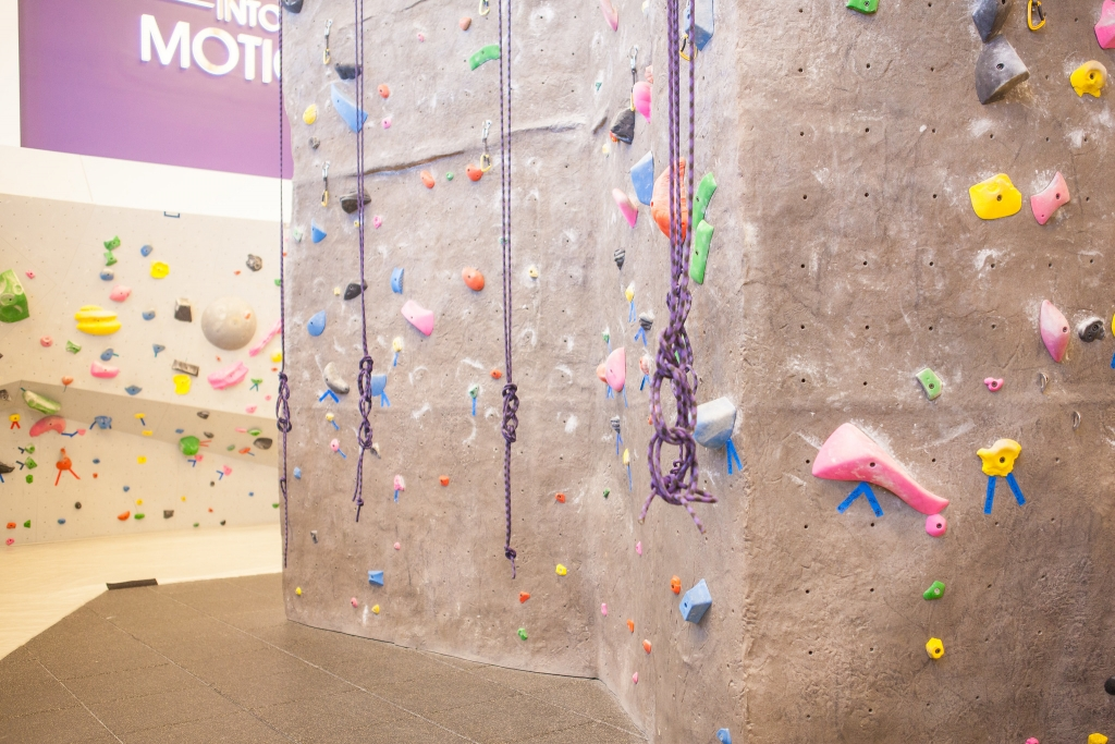 A rock climbing wall with ropes hanging in front of it.