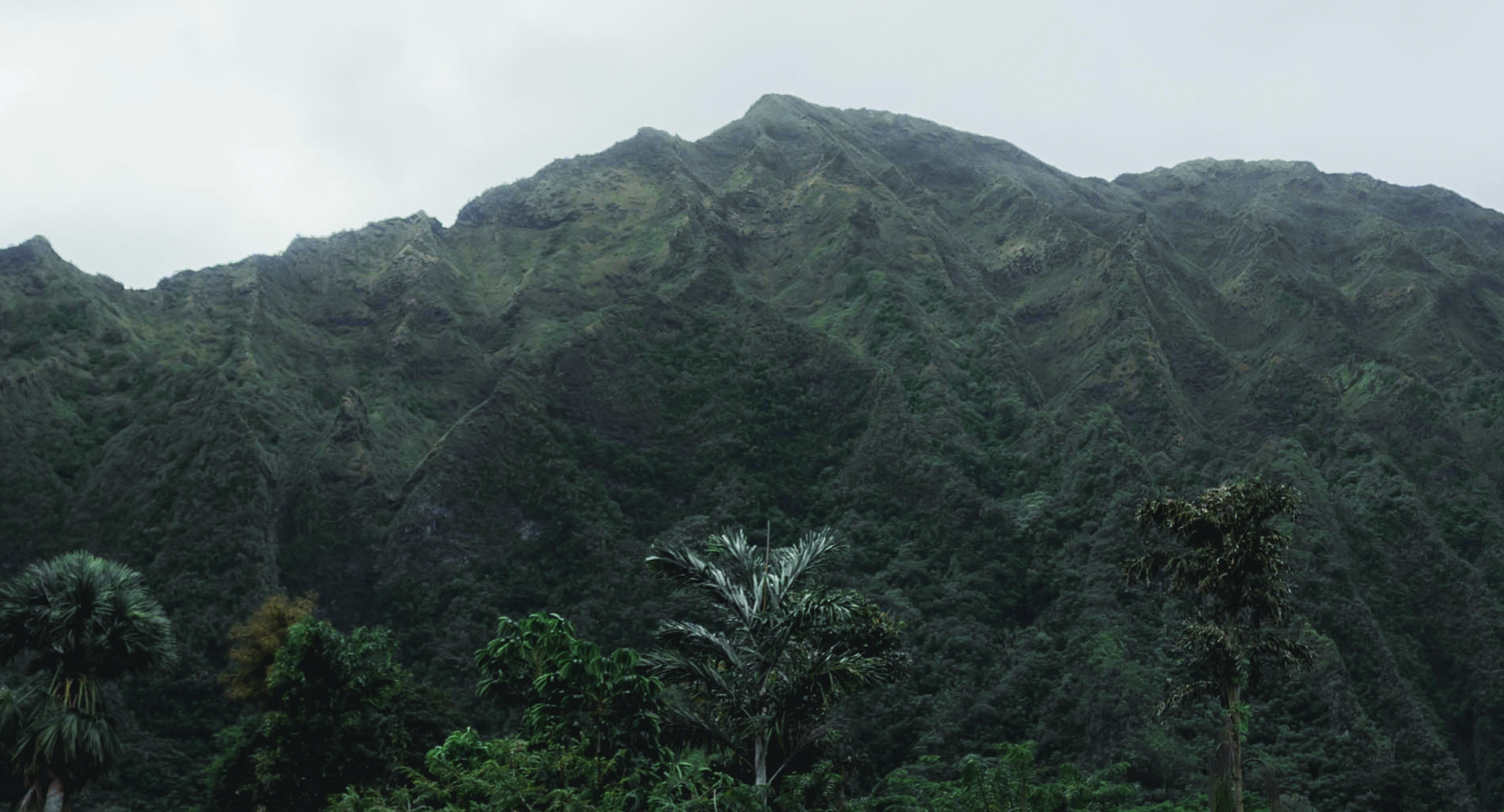 Image of a Hawaiian State Park. It is described to look just like Jurassic Park.